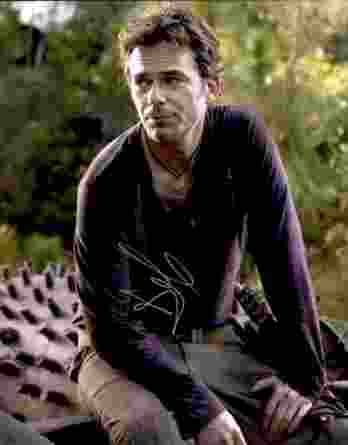 Billy Burke authentic signed 8x10 picture
