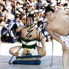 Sumo wrestler Aminishiki Jp signed 8x10 photo