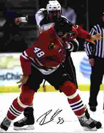 NHL David Koci signed 8x10 photo